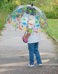 Boy_holding_dinosaur_umbrella_cropped_17023.jpg